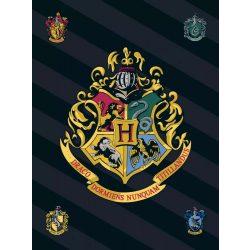 Harry Potter polár takaró 100*140cm