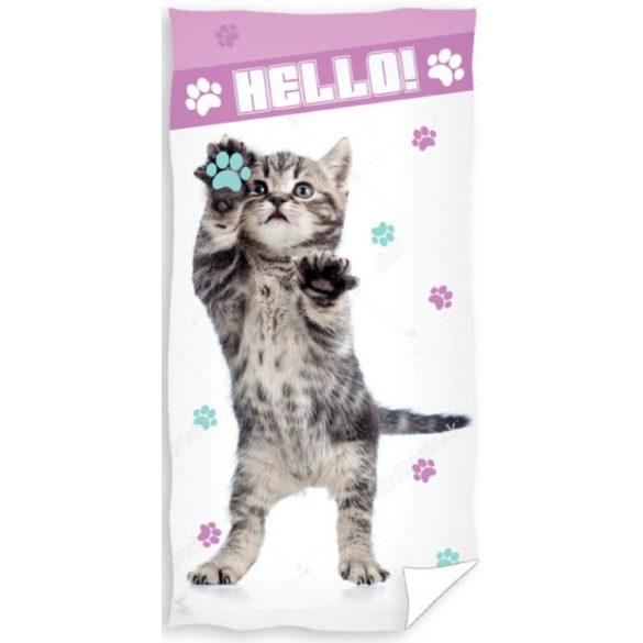 Cicás, The Cat fürdőlepedő, strand törölköző 70*140cm