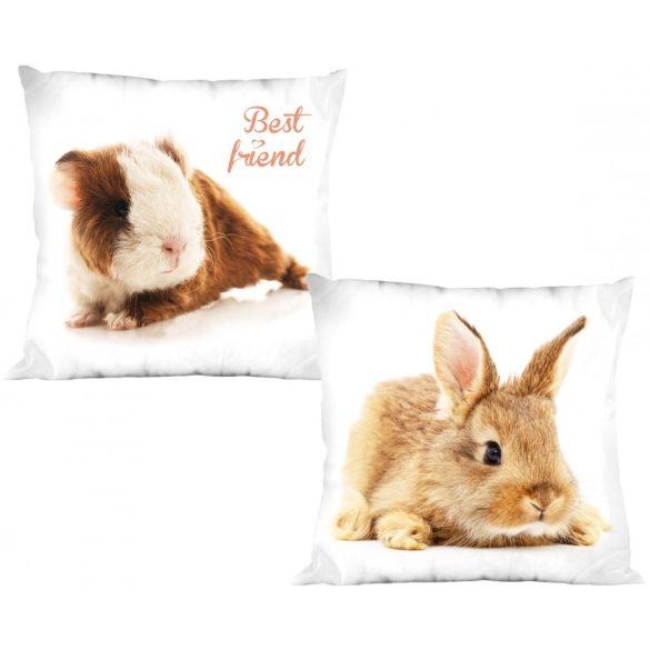 Nyuszi, Rabbit párnahuzat 40*40 cm