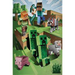 Minecraft polár takaró 130*170 cm