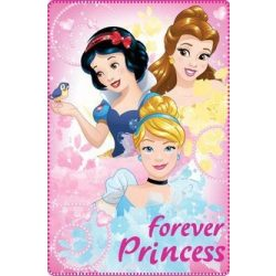 Polár takaró Disney Princess, Hercegnők 100*150cm