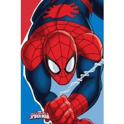 Kéztörlő arctörlő, törölköző Spiderman, Pókember 30*50cm